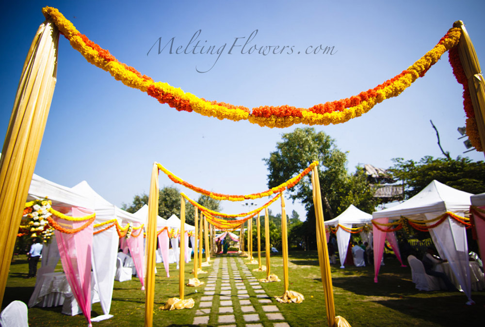 Sunshine marigold theme wedding wedding decorations flower thememarigoldmagic 2g junglespirit Image collections