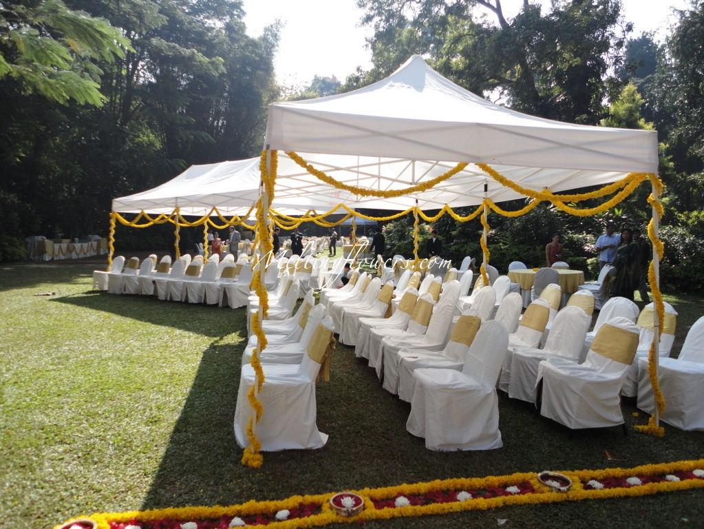 Wedding decorations & Wedding Under A Canopy- Theme Wedding Decorations | Wedding ...