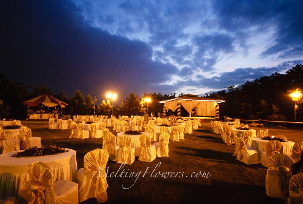 theme wedding decor
