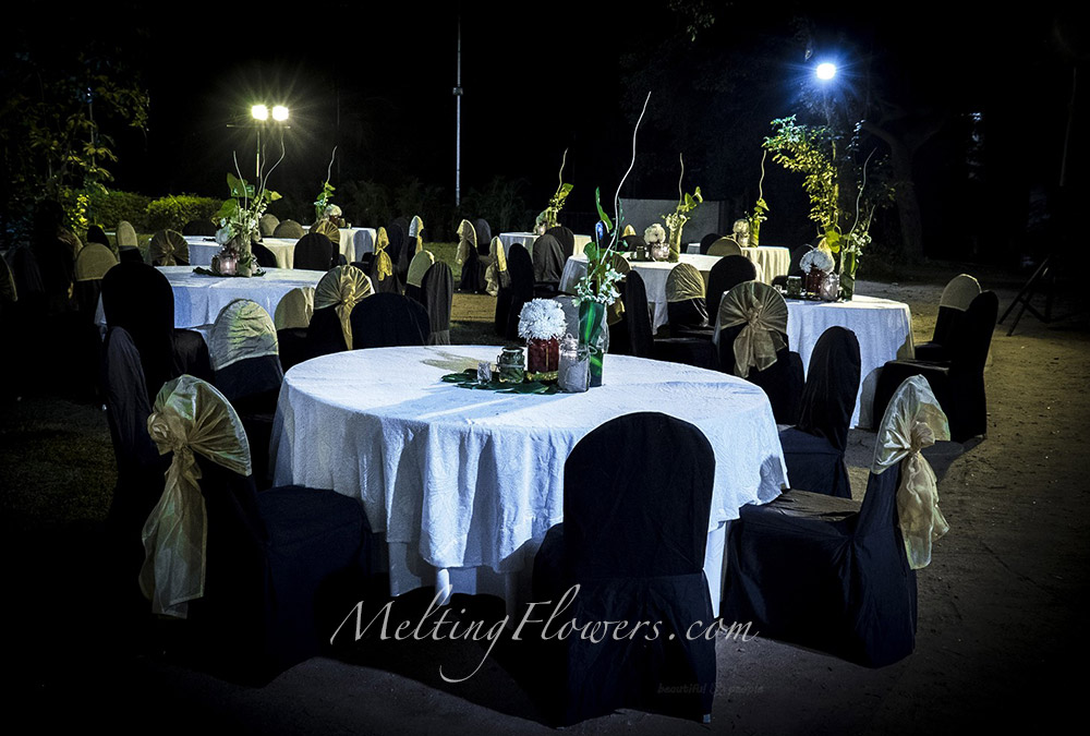 Ideas For Cocktail Party Decorations To Make It Evergreen Wedding