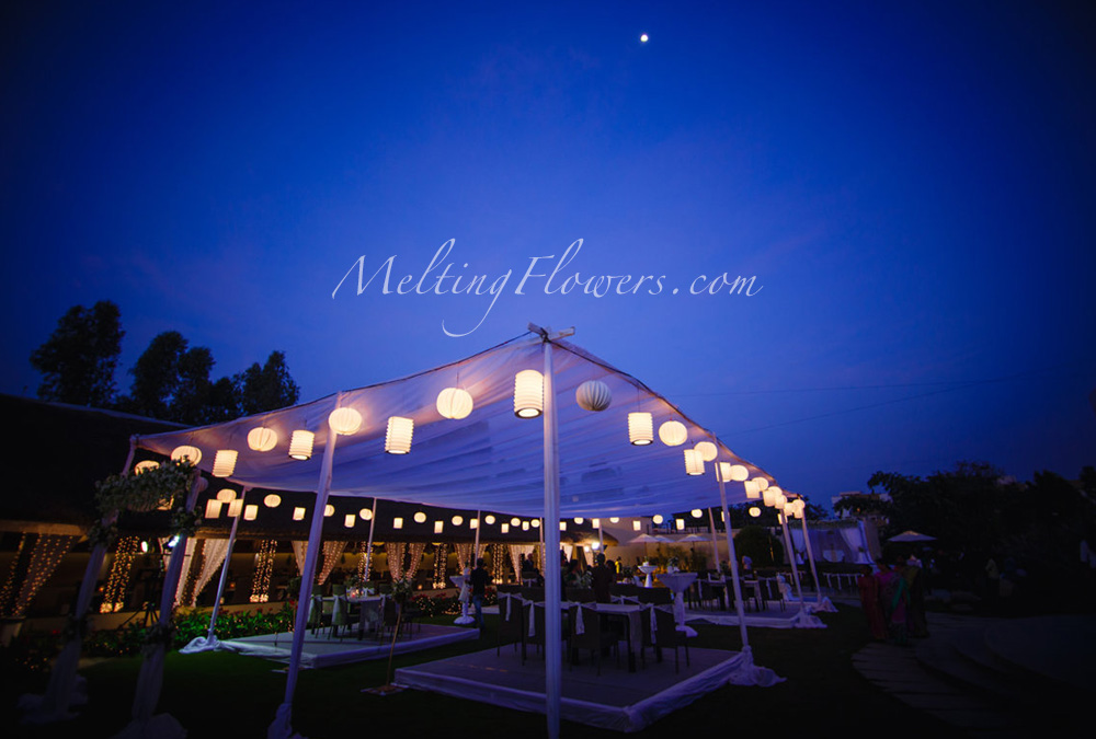 theme wedding decor
