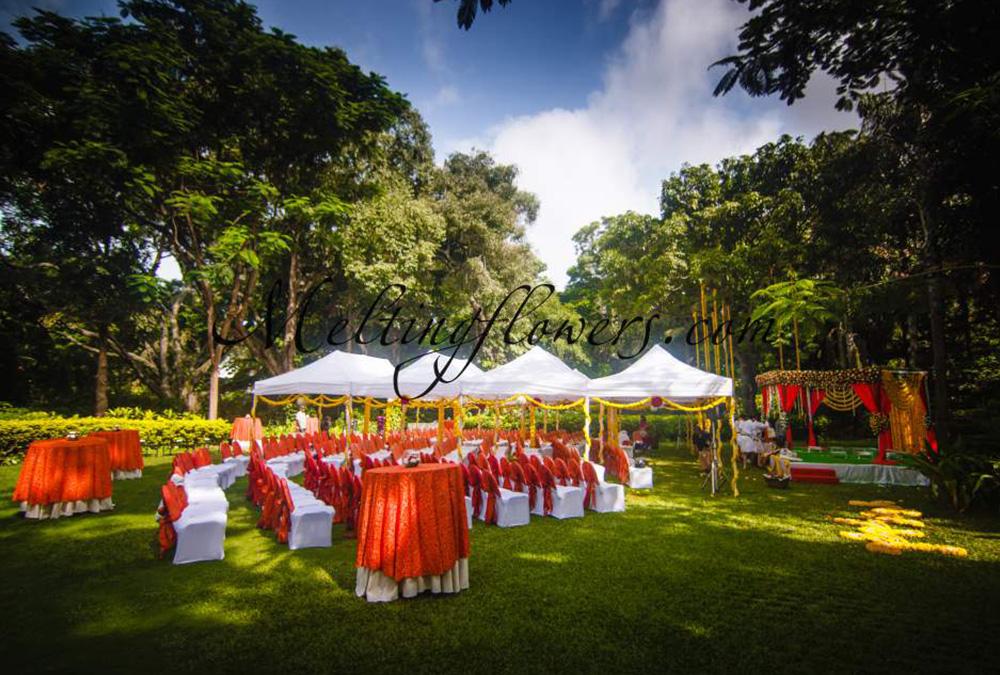 Weddings in garden garden wedding decorations melting flowers garden wedding decorations junglespirit Choice Image