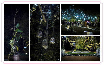 Theme wedding decorations indian wedding decoration themes blend with nature junglespirit Images