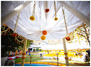 Marigold Wedding Theme