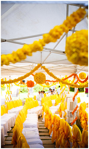 Traditional Marigold Theme